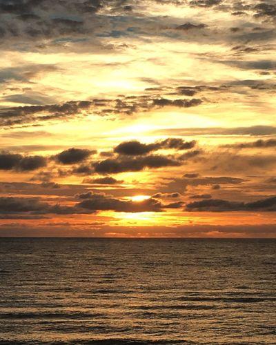 Et une tempête d'or éclata sur la côte ouest. Des paillettes envahirent les airs, les eaux, la terre. On aurait dit que l'environnement avait pris feu. Sunset Coucher De Soleil Sea Mer Noire Nuages Scenics Nature Freedom Beauty In Nature Or Dore Tranquil Scene (null)Tranquility Idyllic Water Sky Sun Horizon Over Water Beach Soleil