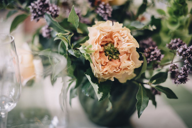 wedding day. good food. freshness Close-up Day Flower Flower Head Freshness Indoors  Leaf Nature No People Petal Plant Table Wedding