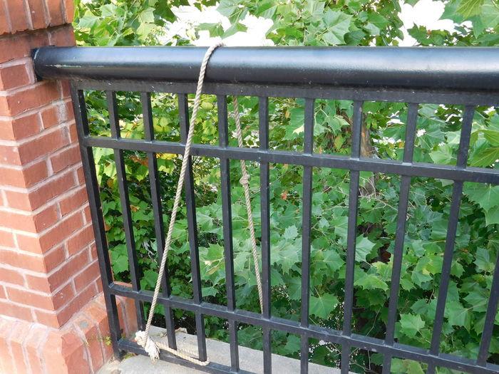 Climb Up! Riverwalk Rope Hanging