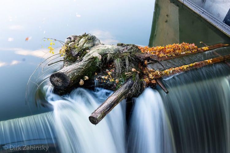 Flow Longexposure Long Exposure Neckar River Water Nature Day Outdoors Motion Transparent