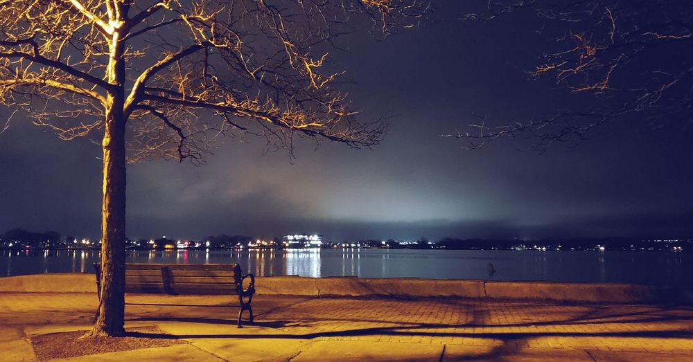 Lake Night Shot, 3. Nature Nature_collection EyeEm Nature Lover EyeEm EyeEm Best Shots EyeEm Selects United States Outdoors Outdoor Photography Night Photography Night Tree Water Star - Space Sea Galaxy Beach Sky Lightning Milky Way Scenics