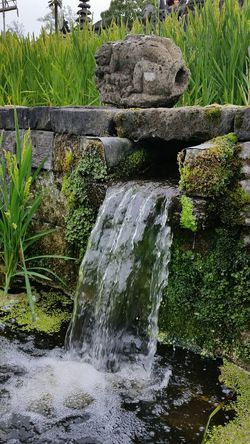Water Fountain Nature Green Color Beautiful ♥ Garden Architecture Relaxing Relaxtime Environment Protection Balinese Culture Balistyle Green Water Reflection Water - Collection Naturephotography
