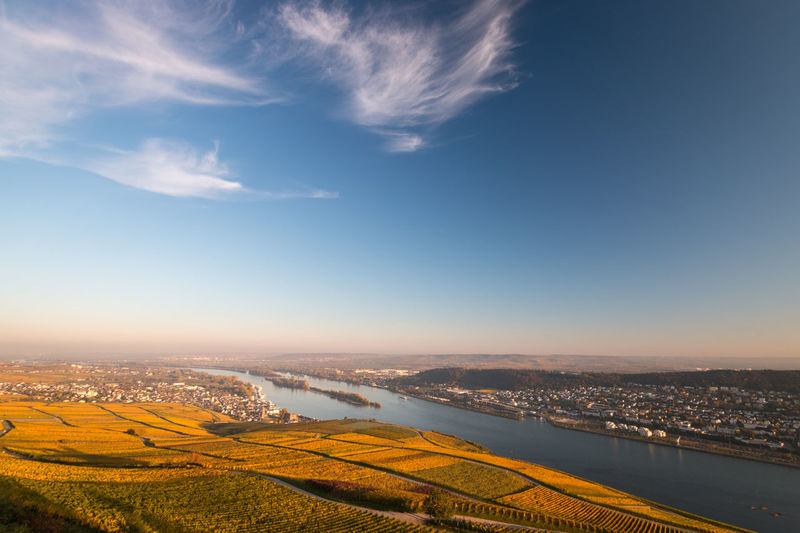 Scenic view to rheingau and rheinhessen with coloring vineyard in autumn against blue sky
