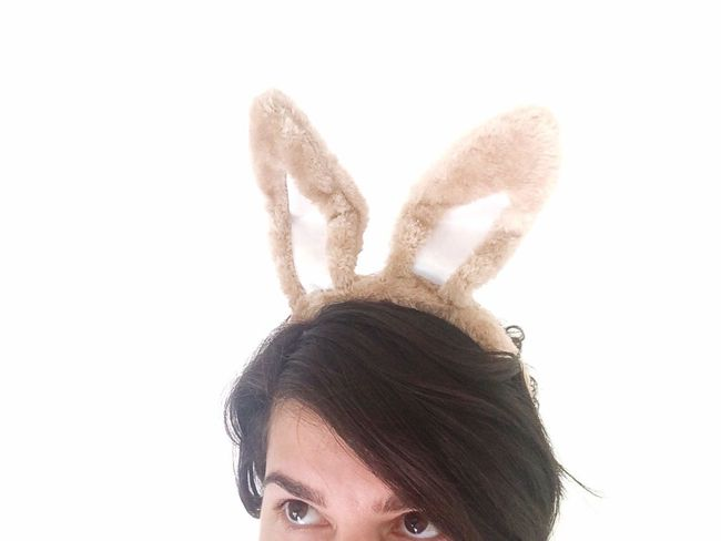 Bunny Easter Bunny  Ears Holiday