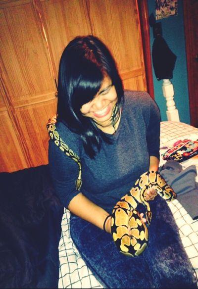 Cute snakes :D