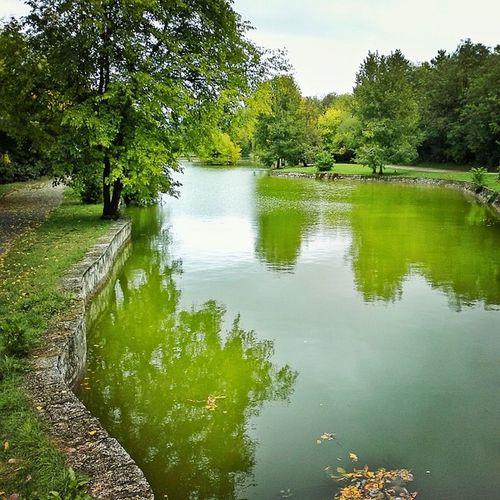 Dobrich Bulgaria Lake Park autumn