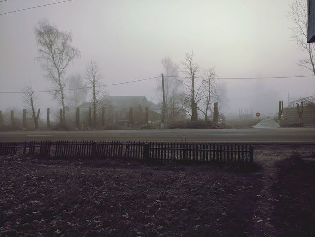 Strange places in my city Cuted Tree Fog Foggy Morning Silent Hill No People Tree Sky Outdoors Day