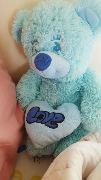 Lifestyles Childhood People One Person Close-up Human Body Part Adult Adults Only Day Cute Love Teddy Bears Tedy Bear🐻 TEDDY LOVE Romantic❤ Lovely Fashion