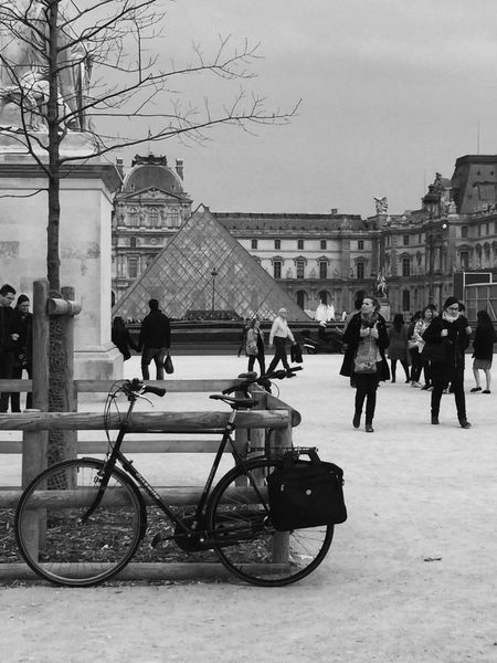 Outdoors Tree Bicycle EyeEm Gallery Pyramide Du Louvre People Watching Architecture City People Blackandwhite Sky Transportation