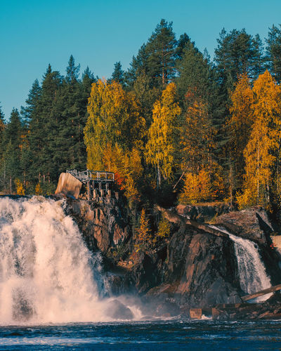 Scenic view of waterfall in forest against sky during autumn
