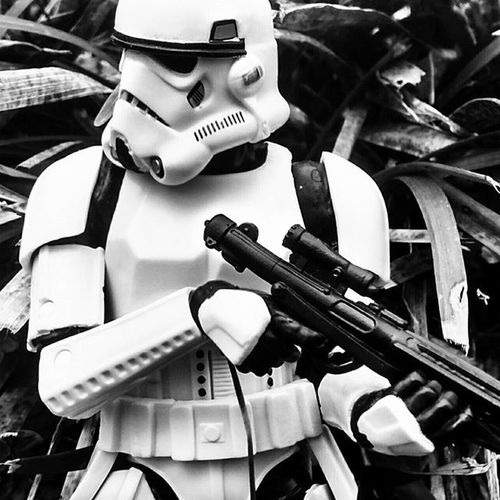 """Slowly moving through the brush, TK-1142's pulse is skyrocketing. Why you might ask? Two words. Luke Skywalker. I cannot thank you all enough. 200 followers may not seem like a lot, but it is a start. First and foremost, I would like to thank the one and only @fovmodels . He inspired me to start my page, and without him, I would not be here saying this. It was because of these photographers, such as @x_captain_kaos_x @fovmodels as mentioned above, and @hallandbroates , @clonetrooper_life66 @clonejourneys that brought me here, not as rival (OK, I don't know about that 😊) but as a friend. You all are amazing, and it's fun, lying down on my stomach or some Tai Chi position to get the best. Believe me, trial and error at first were common names in my head, but error was my best friend. But, where I am now, they are more of """"acquaintances"""", if you will. Si just a big thank you for the constant support from where I started to now. Thank you and always, may the Force be with you. Also my entry for the Swspacebetween contest Starwarstheblackseries6inch Starwars Stormtroopersaturday Style 200followers Somuchwin @starwarstheblackseries Toydiscovery Toycrewbuddies Toygroup_alliance Toptoyphotography Toyplanet Toyslagram Toyplanet Toptoyphotos Toyboners 1142eatmyass Savage Tcb_darksideclub🔴 Atafamily Ata_dreadnoughts Atafamilyfriday Starwars TFA Fov_starwars _toysinaction_ l4l f4f toyphotography TGA_Hangover SWSpaceBetween"""
