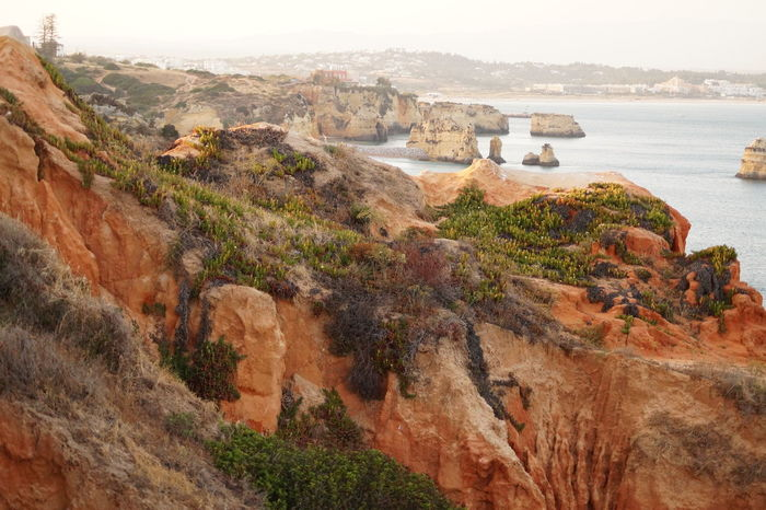 Landscape Beach Nature Cliff Sea Beauty In Nature Scenics Erosion Eroded Rocks Cliff top view