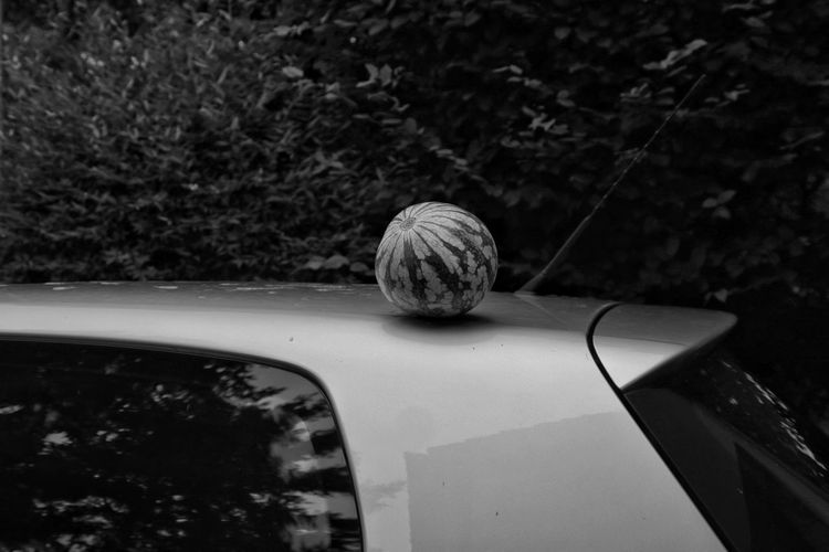 High angle view of a melon on car