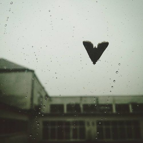 Close-up of airplane flying through window in rainy season