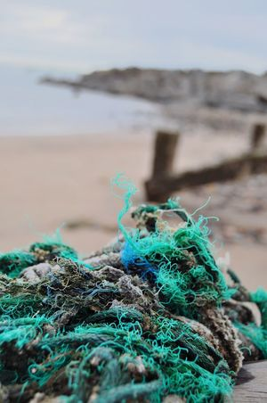 Green And Blue Green Color Turquoise Colored Water Sea Beach Fishing Net Harbor Fishing Tackle Fishing Equipment Close-up