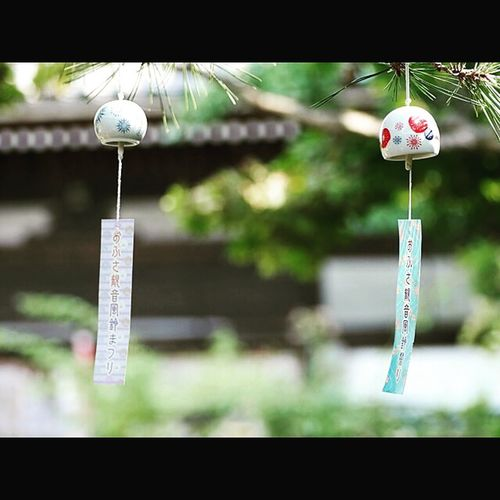 Japan EyeEm Best Shots OpenEdit Tommy@collection Nara おふさ観音 奈良 Windchimes 風鈴 Lovely