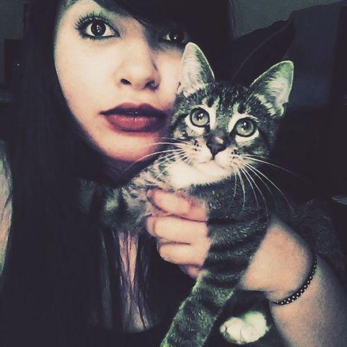 Cat_lover Kitty Mood Memories Eyes Intagood Instalike Instagram