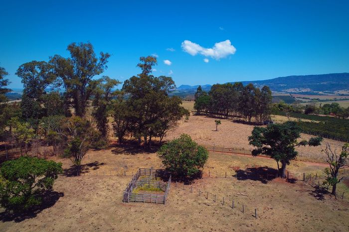 Contrastes do campo EyeEm Selects Rural Scene Rural Dronephotography Aerial View Aerial Photography Aerial Shot Clouds And Sky Clouds Sky And Clouds Cloud Sun Farm Field Blue Sky Green Color Tree Agriculture Sky Outdoors Landscape Blue No People Scenics Nature EyeEmNewHere Shades Of Winter An Eye For Travel