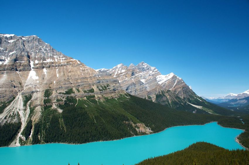 Banff National Park  Breathtaking Canadian Rockies  Clear Blue Sky Hiking Peyto Lake Travel Turquoise Colored Blue Green Water Destination Glacial Lake Lake At The Foot Of A Mountain Mountain Mountain Range Snowcapped Mountain My Best Travel Photo