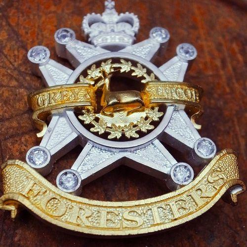2013年安妮公主👸代表伊丽莎白女王视察加拿大时我们系送给女王女儿的礼物 Jewellery Anneelizabeth Canada Royalfamily