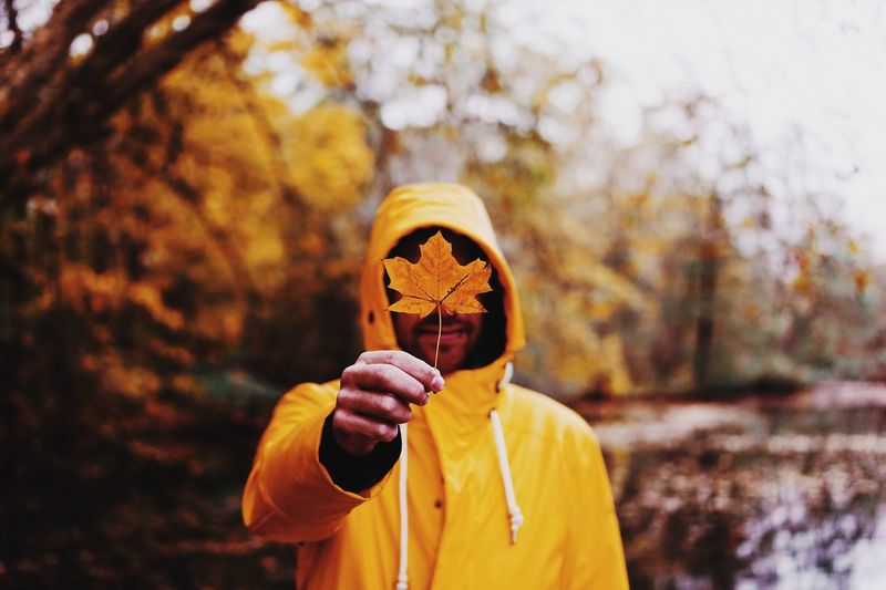 Man holding dry orange maple leaf during autumn