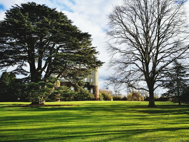 Castle Malahide Castle Malahide  Dublin, Ireland Ireland🍀 Tourist Attraction  Tree Growth Grass Nature Green Color Beauty In Nature Tranquility Park - Man Made Space No People Freshness Day