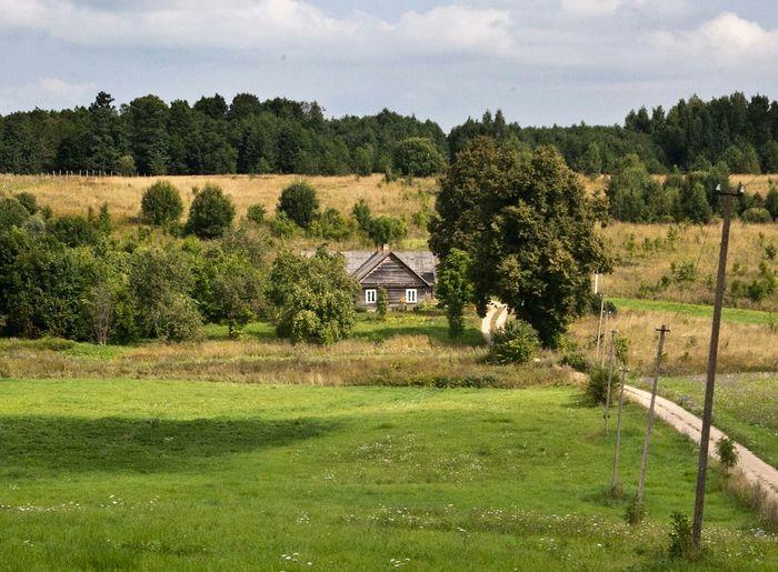 Lithuanian countryside Lithuania Countryside Lithuanian Countryside Nature Rural EyeEm Nature Lover
