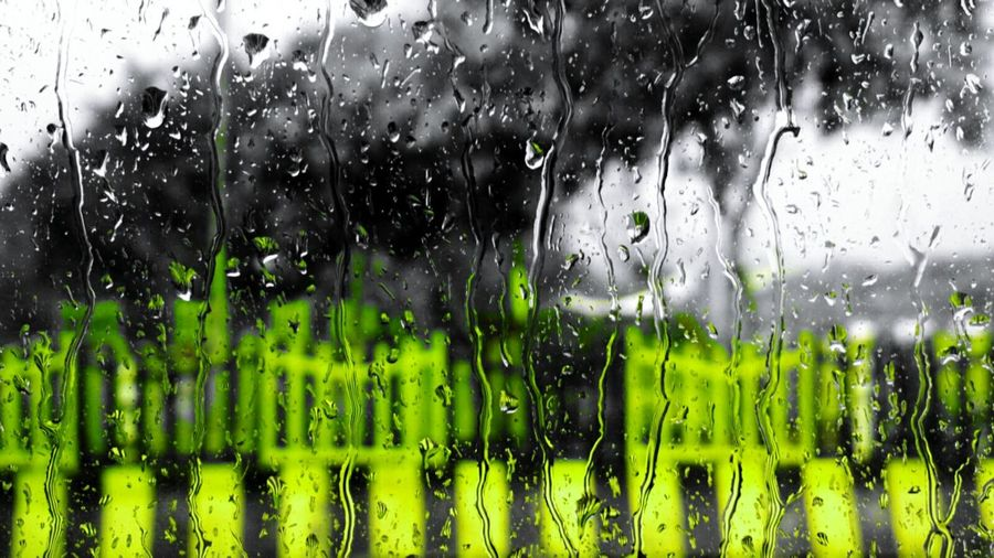 Drop Water Rain RainDrop Rainy Season Window Nature Colours Of Nature Market Worldwide_shot EyeEmNewHere Indiapictures Photosfromindia Indiaphotographer Abstract Photography Magazine EyeEm Vision Mobile Phone Photography The Street Photographer - 2017 EyeEm Awards EyeEm Best Shots - Nature Indianphotographer Nokia808Pureview Nokia808 Zeisslens Droplets Paint The Town Yellow