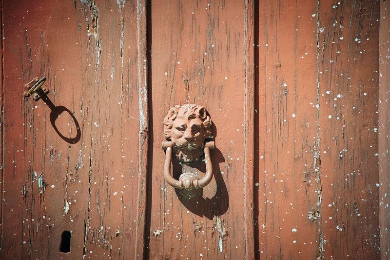 Close-up of door knocker on door