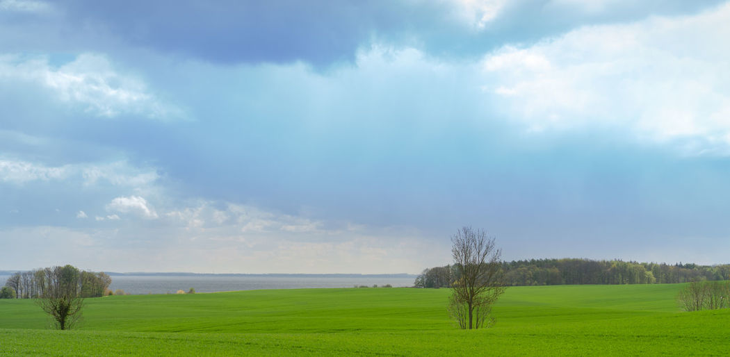 Beautiful view over green fields on the German Baltic coast near Groemitz, panorama Sea Baltic Field Coast Green Background Spring Groemitz Meadow Grass Water Landscape Beautiful Blue Tree Sky Season  Agriculture Rural Country Horizon Scenery Land Nature Germany Summer Travel Countryside Clouds Banner Panorama Cloud - Sky Scenics - Nature Green Color Tranquil Scene Non-urban Scene Beauty In Nature Outdoors Day Rural Scene