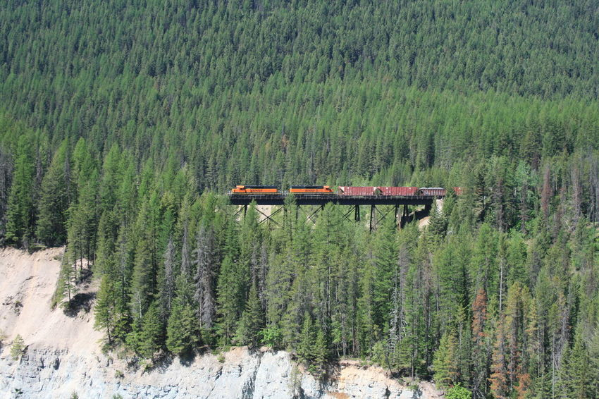 Beauty In Nature Bridge - Man Made Structure Day Forest Green Color Growth Landscape Mountain Nature No People Outdoors Plant Red Train Scenics Transportation Tree Lost In The Landscape Montana