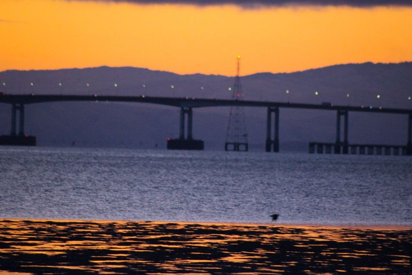 43 Golden Moments San Mateo Bridge Sunrise Coyote Point