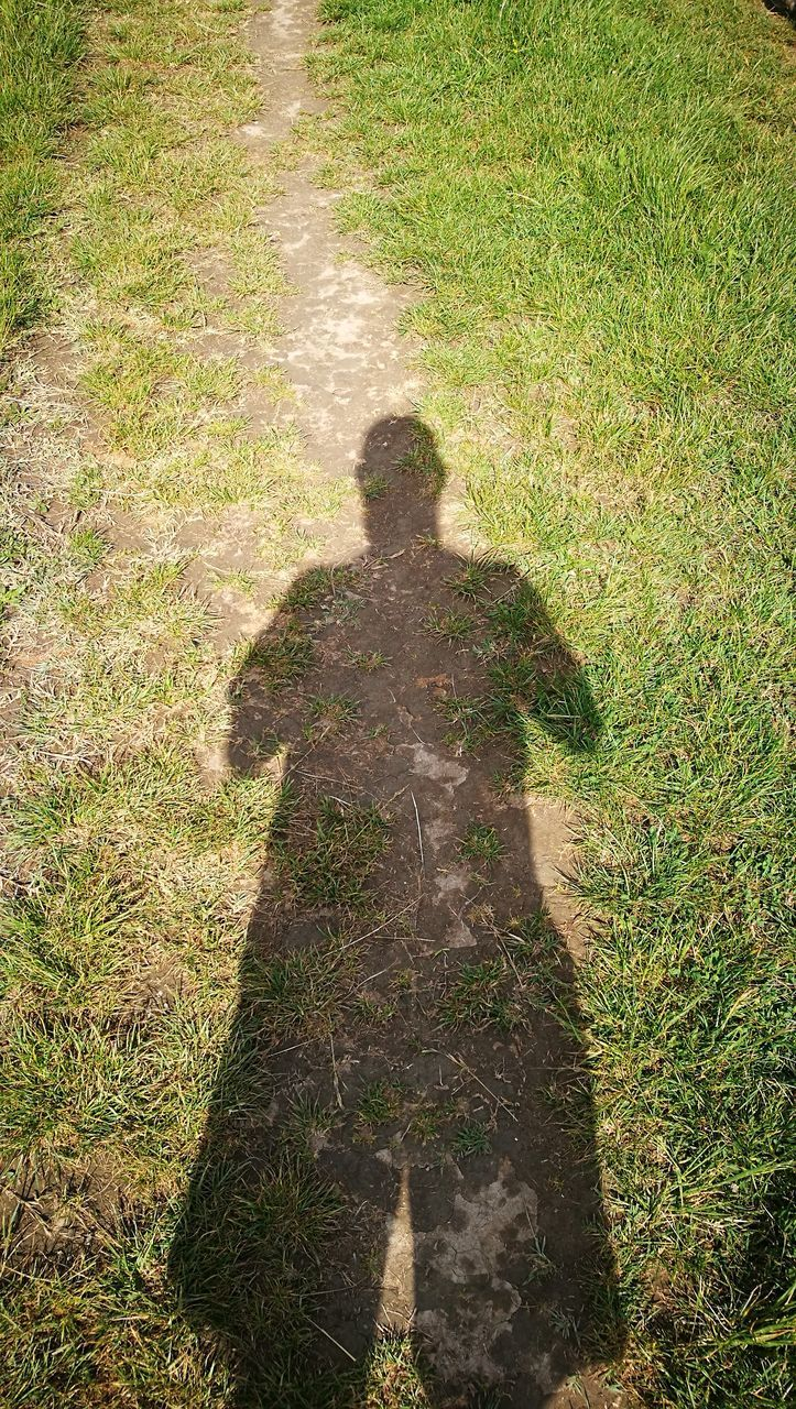 plant, grass, sunlight, high angle view, shadow, real people, nature, focus on shadow, day, men, one person, lifestyles, leisure activity, field, outdoors, growth, land, standing, green color