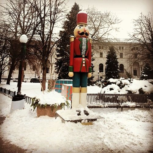 Took this pic yesterday. Decided to take a few pics in Downtown Saintpaul Ricepark while waiting for the bus Winter