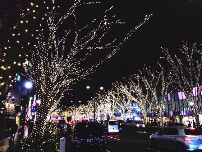 Exquisite Japan Christmas Lights Merry Christmas! Urban Nature