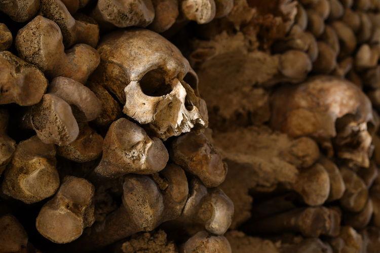 Close-up of stacked human skulls and bones