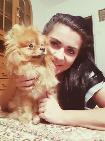 Pomeranian Slovakgirl Beauty