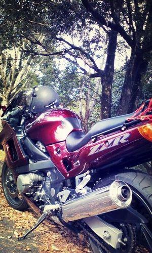 バイクは何台も乗り継いで…今も忘れられぬ初恋のNinja!