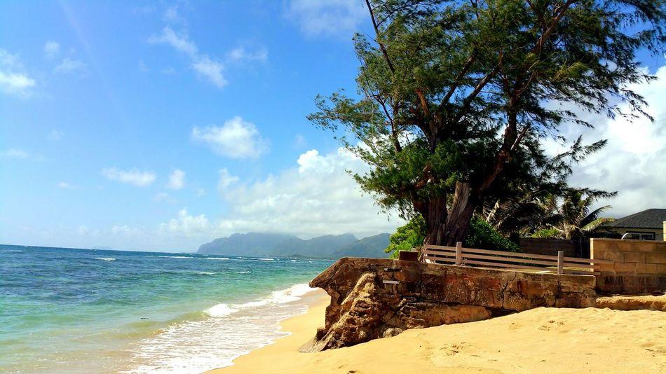 Laie, Hawaii Hawaii Oahu Laie Beach Beach Photography