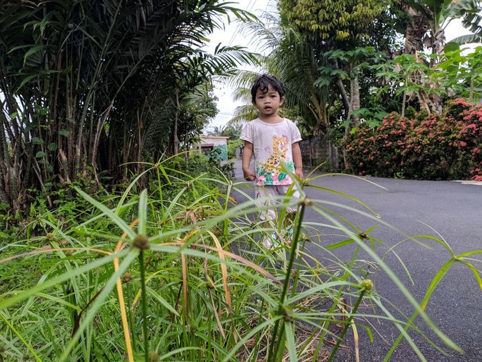 Portrait of girl standing against plants