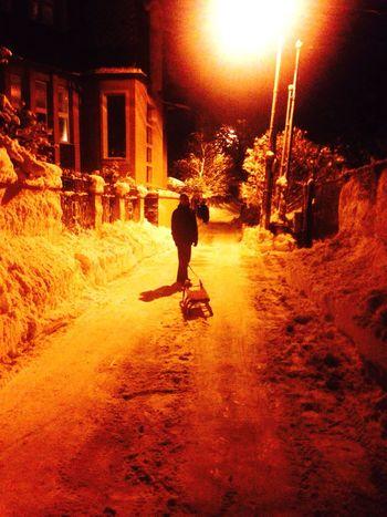 Slovakia Snow Day Sledge Calamity