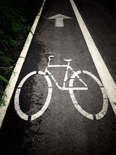 Bike Lane Road