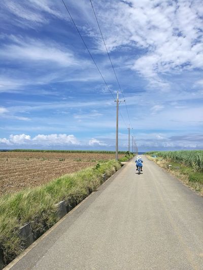 Haterumajima Bicycle Bicycle Trip Sunny Day Rural Scene Road Electricity  Field Power Line  Sky Grass The Way Forward Country Road Countryside Long