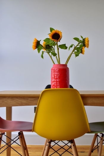 Close-up of yellow flower in vase on table against wall
