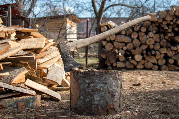 Close-up Day Focus On Foreground Heap Log Lumber Industry Nature No People Outdoors Timber Tree Wood - Material Woodpile