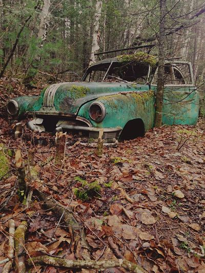 Nature Car Green Nature_collection Beautiful Nature Canada Quebec