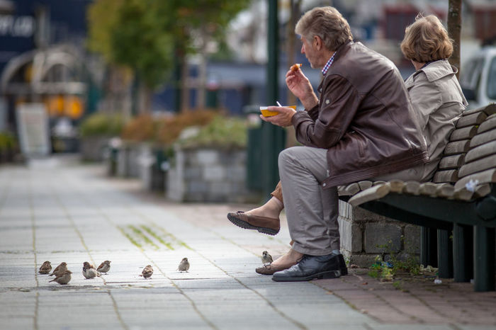 Animals Begging For Food Bench Better Look Twice Casual Clothing City Food Front View Fun Holding Human Body Part Human Leg Leisure Activity Lifestyles Low Section Men Occupation Person Perspective Real People Sitting Sparrow Sparrows Street Streetphotography Togetherness
