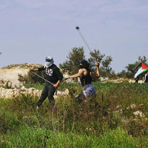 Aesthetics Thatbacktho Bil'In Slingshotwarriors الشاباب