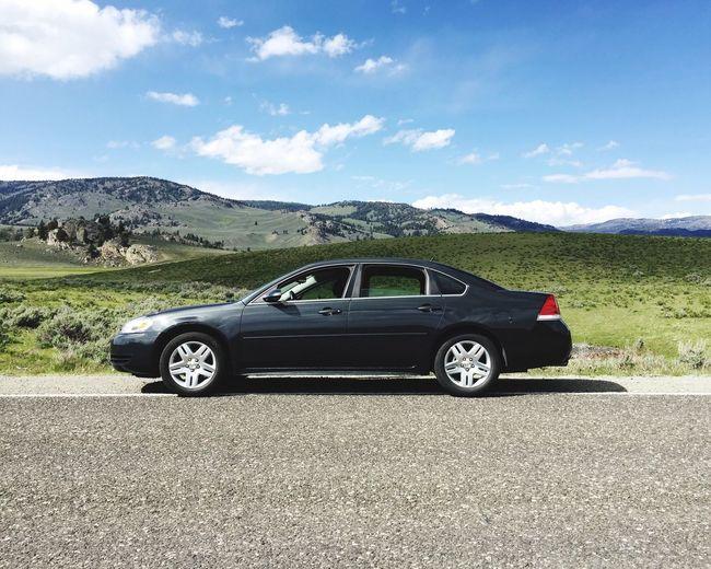 Impala Roadtrip Lamarvalley Yellowstone National Park
