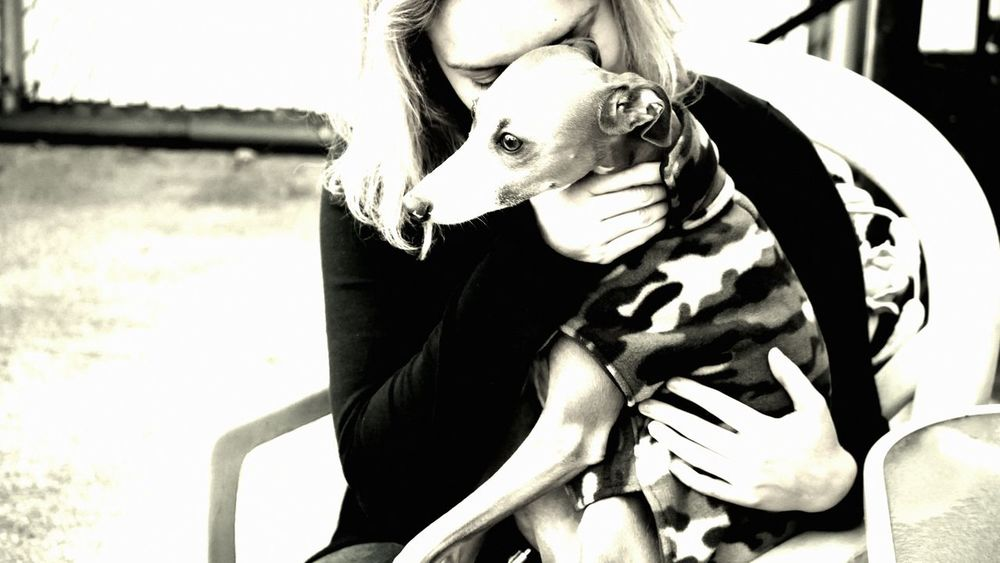 All you need is love Pet Therapy Girl And Dog Black & White Ludwig Adoption Adopt A Pet Italian Greyhounds Greyhound Love Iggy Rescue Rescue Greyhound Rescue Tenderness The Week On EyeEm